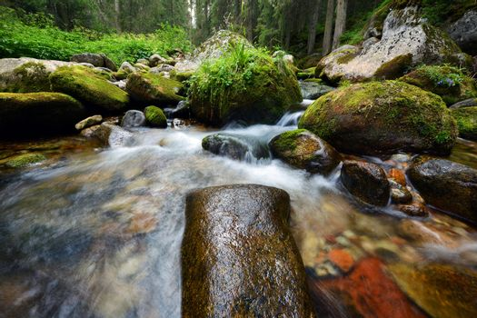 Mountain river and mossy stones - Poland Tatry mountains