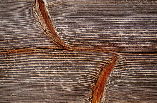 structure of spruce board