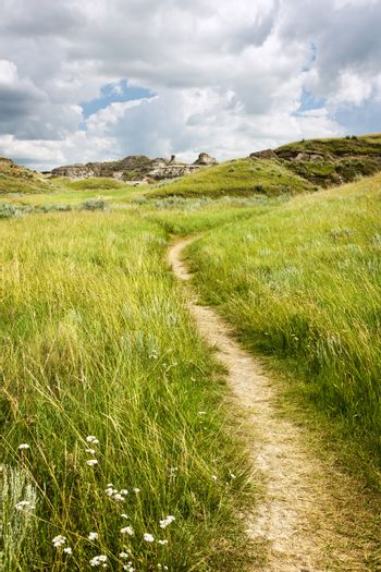 Hiking trail through Badlands in Dinosaur provincial park, Alberta, Canada