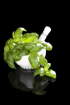 Aromatic herbs.