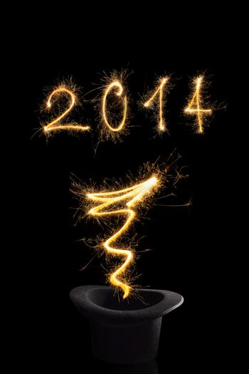 Magical new year 2014.