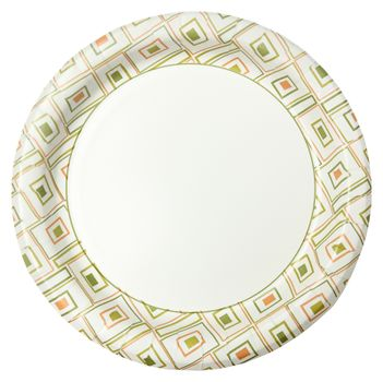 Disposable Paper Plate Over White