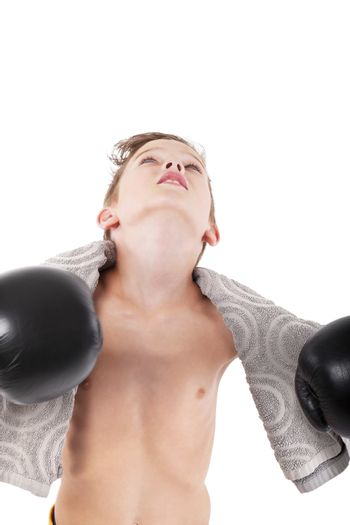 Young champion. Charming boy with boxing gloves and towel looking up isolated on white background.
