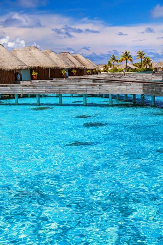 Luxury resort in Maldives