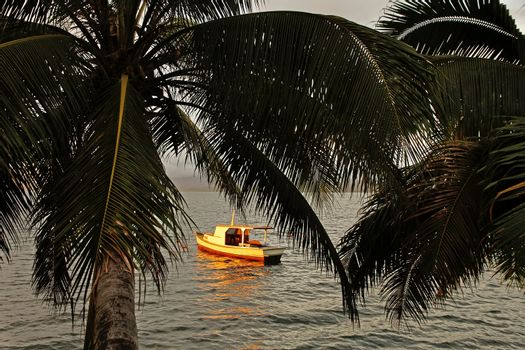 Silhouette of palm trees and a boat at sunset, Savusavu harbor,
