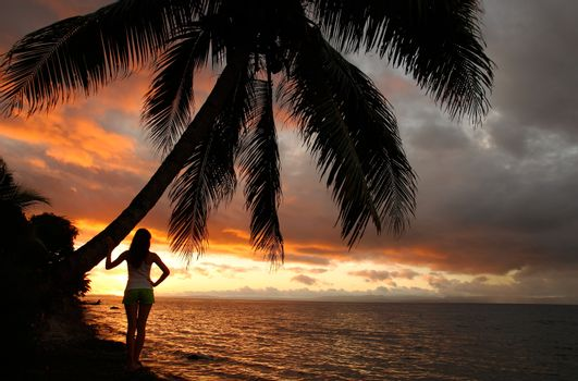 Silhouetted young woman by the palm tree on a beach, Vanua Levu