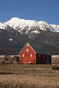 Livestock Wind Break Horse Leaning Red Barn Mountain Ranch