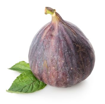 Figs with green leaf