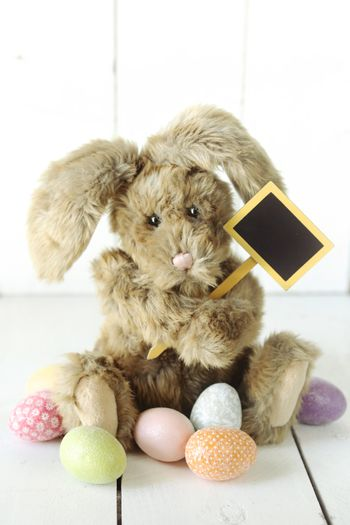 Easter Bunny Themed Holiday Occasion Image