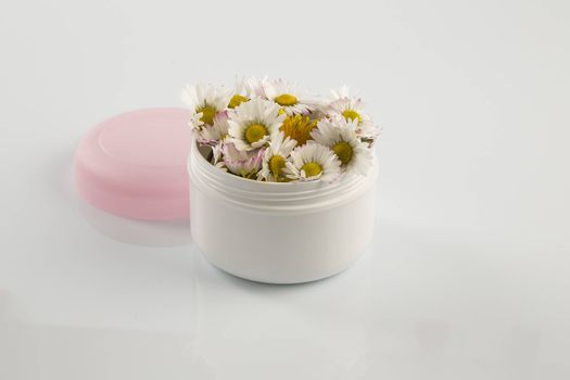 Daisies and Dandelion in cosmetic cream box