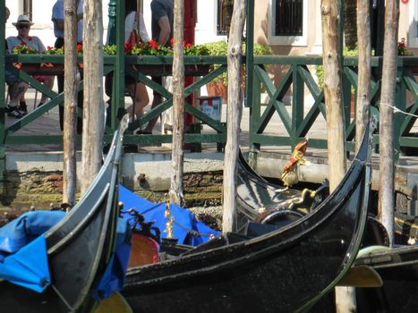 Venice, Italy ��� July 20, 2013: the Festival of the Redeemer is the favourite event for Venetians, a thanksgiving for the end of the plague in 1577, ends with a series of gondola races, organized as part of the rowing season
