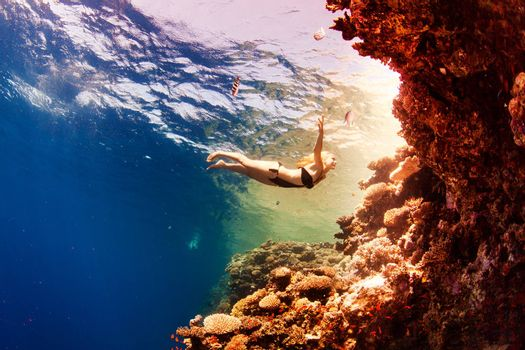 beautiful girl and corals in the sea