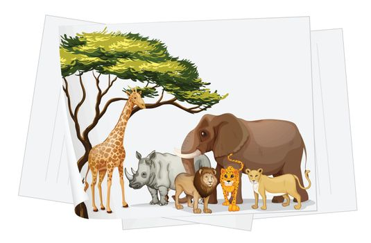 illustration of Animals in jungle on a paper on a white