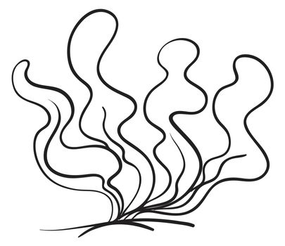 a clipart of the plant