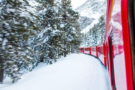 The famous Bernina red train, Unesco monument, in the middle of a winter storm