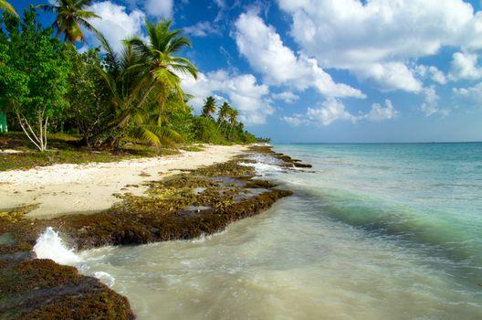 Caribbean clear beach and tropical sea