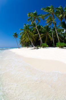 tropical sea and blue sky