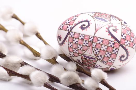 isolated egg with catkins