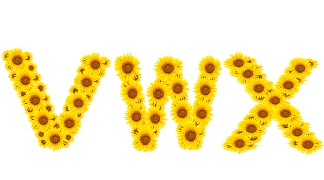 alphabet VWX