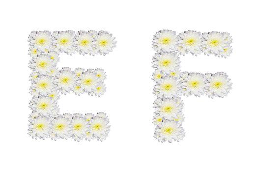 alphabet EF