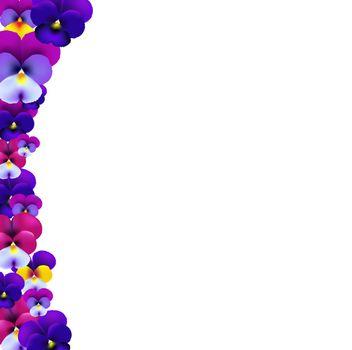 Violet Flowers Border