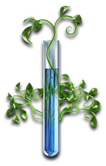 Young green sprouts plants germinate in laboratory test-tubes with a blue transparent solution on white background. 3D biotechnology concept