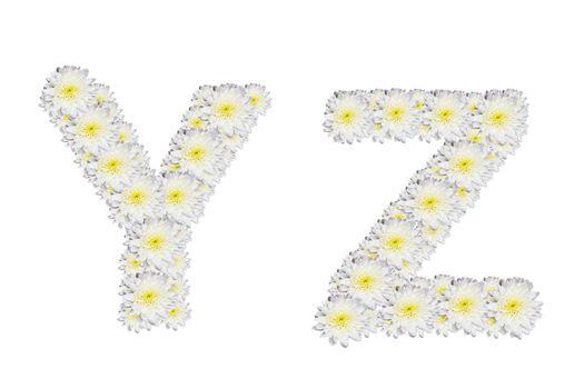 alphabet YZ