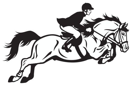 equestrian jumping
