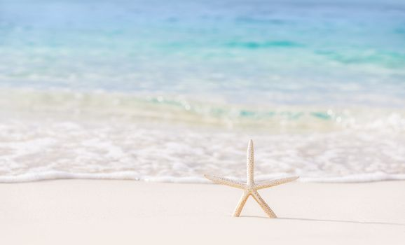 Beautiful beach background, postcard with image of sea star on clear white sandy coastline, day spa, luxury summer vacation concept