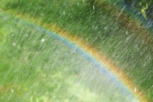 rainbow on the green meadow with rain