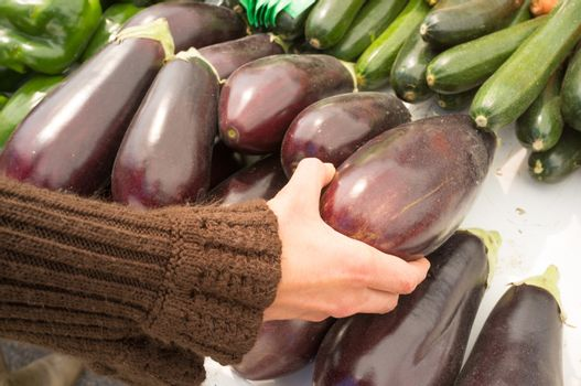 Female hand choosing eggplants on a street market stall