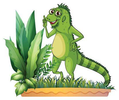 A big reptile