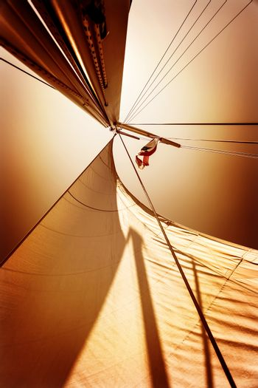 Sails in sunset light
