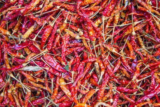 Dried chilli.