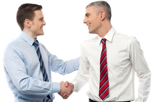 Smiling businessmen shaking hands