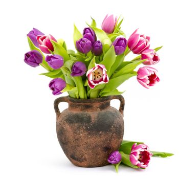 colourful tulips in a vase