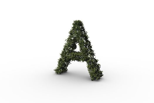 Capital letter a made of leaves