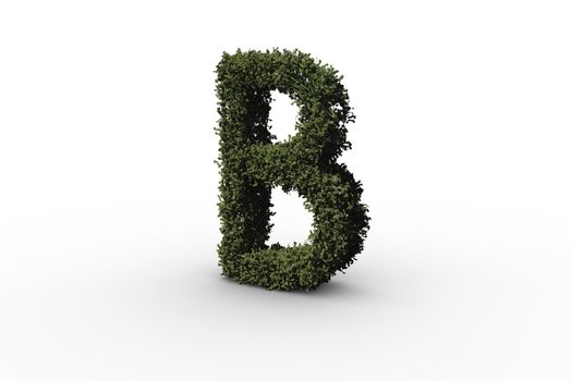 Capital letter b made of leaves