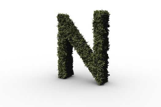 Capital letter n made of leaves