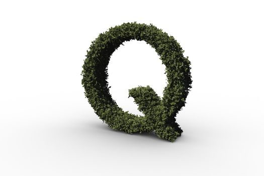 Capital letter q made of leaves