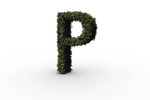 Capital letter p made of leaves