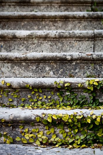 old stairs