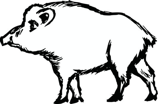 hand drawn, cartoon, sketch illustration of wild boar