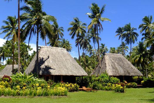 Traditional bure with thatched roof, Vanua Levu island, Fiji