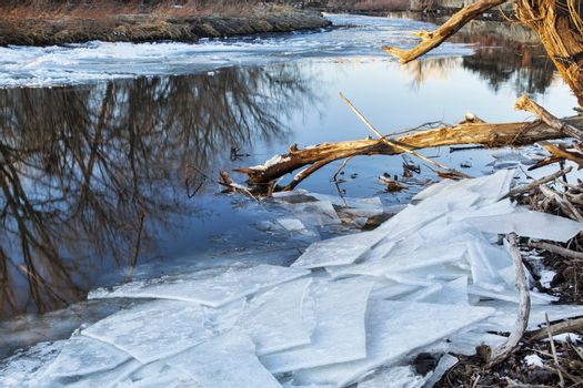 Poudre River with icy shores