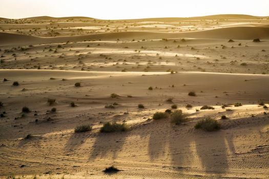 Desert evening mood Oman