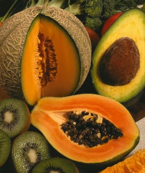 Selection of exotic tropical fruits - cantaloupe, papaya, avacado and Kiwifruit.