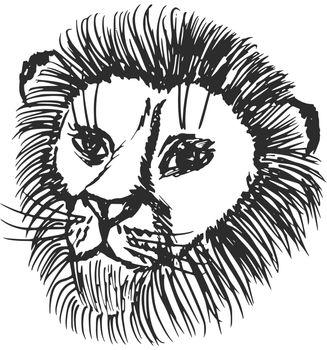 hand drawn, sketch, cartoon illustration of lion
