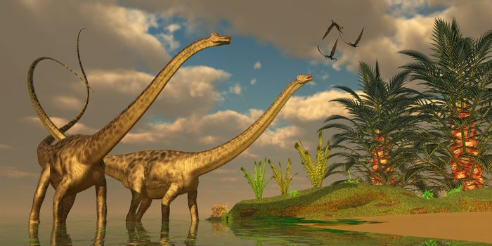 Three Dorygnathus dinosaurs fly over Diplodocus dinosaurs in a mating ritual.