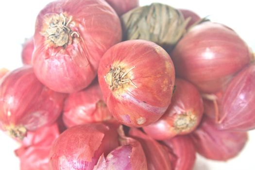 red onion close up